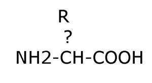 Structuur Aminozuur